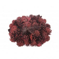 Dennenappel Pinus Silvester Dark Red Frosted
