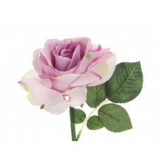 Roos Single Queen Anne Roze Mauve